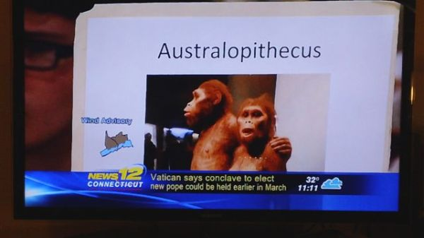 Darwin Day Screen Shot